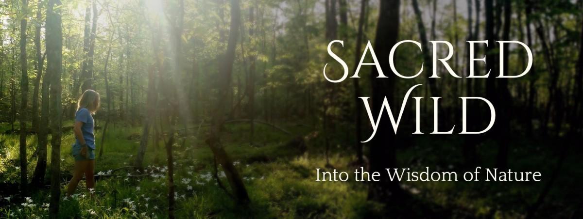 Sacred Wild - Sarah Haggerty Sacred Speak With Sarah